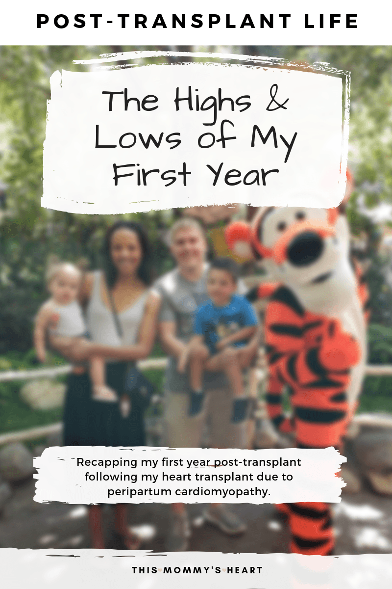 Post-Transplant Life - The Highs & Lows of My First Year