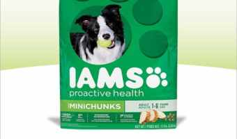 IAMS Gift Card Deal at Target! #IamsDogDeal #ad