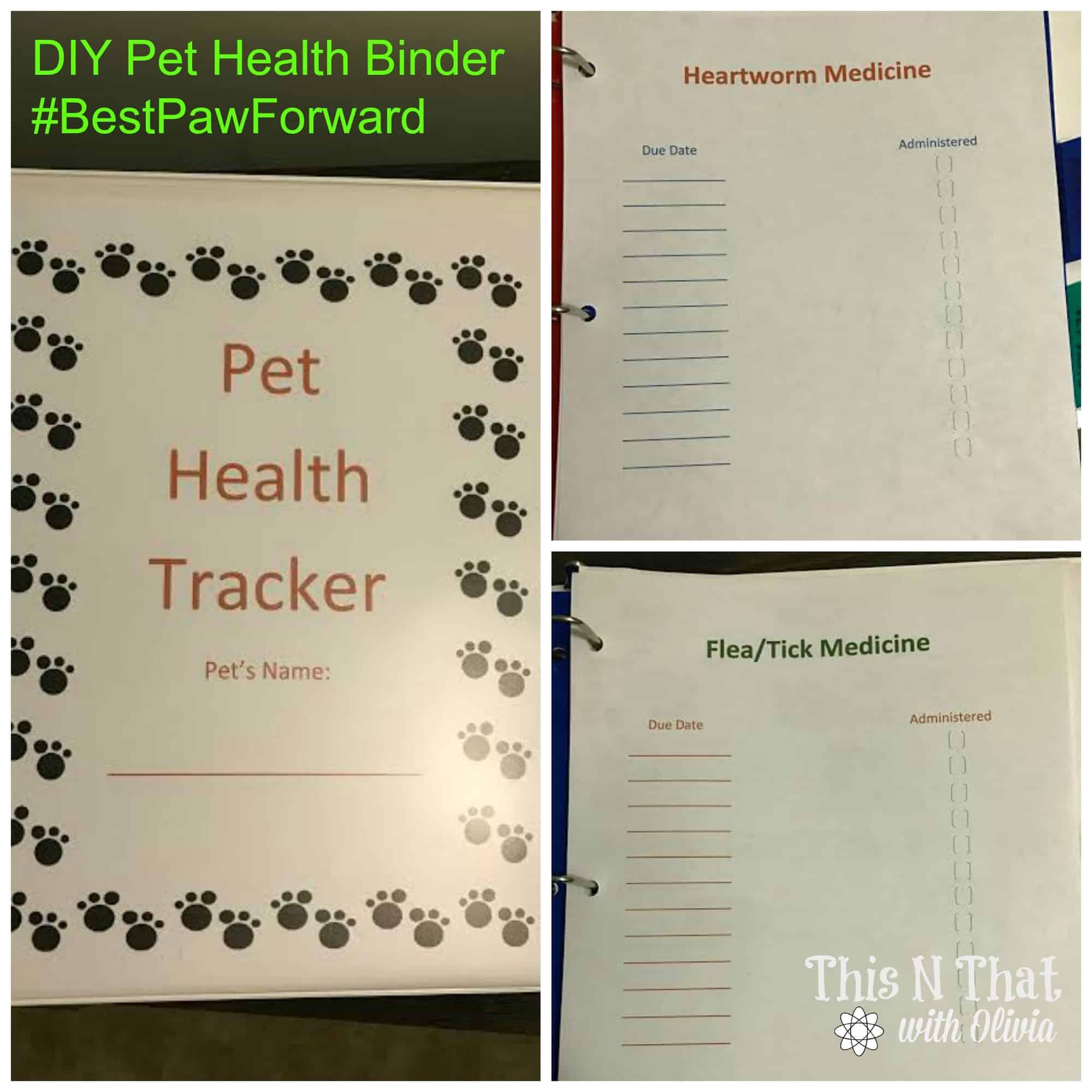 diy pet health binder bestpawforward ad pethealth