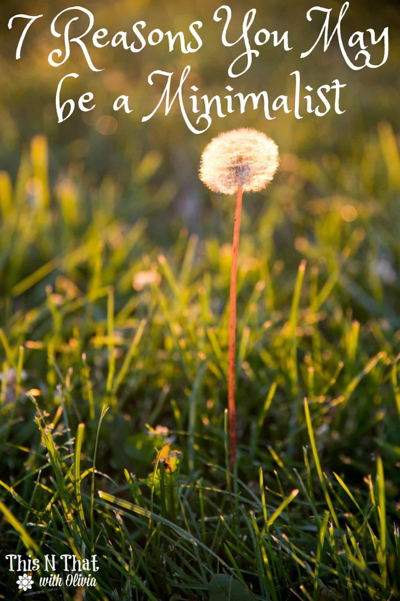 7 Reasons You May be a Minimalist