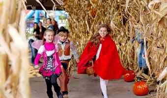 Halloween in Hershey PA is Right Around the Corner #HersheyPA