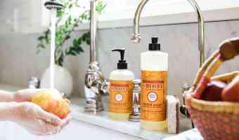 Free Mrs. Meyer's Fall Scents from Grove Collaborative