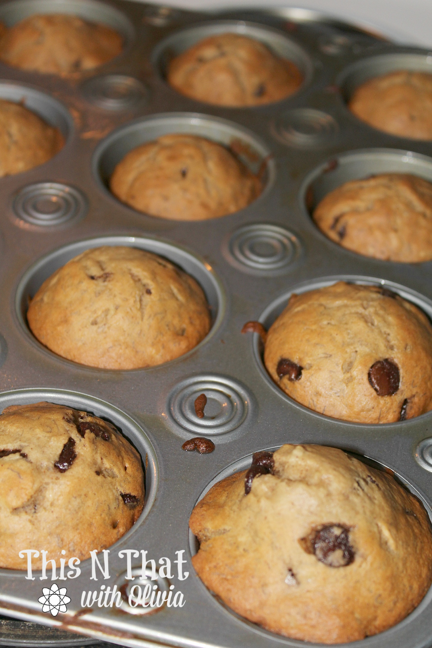 Healthy Chocolate Chip Breakfast Muffins