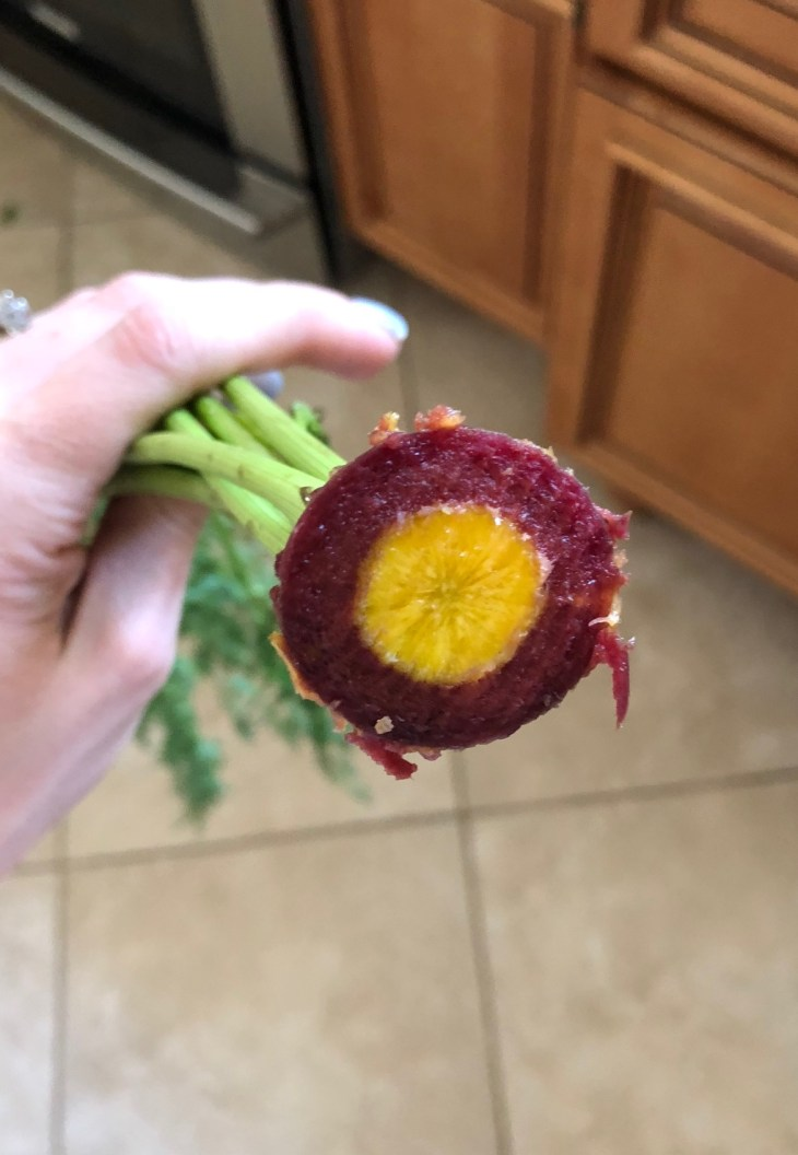 rainbow carrot stalk