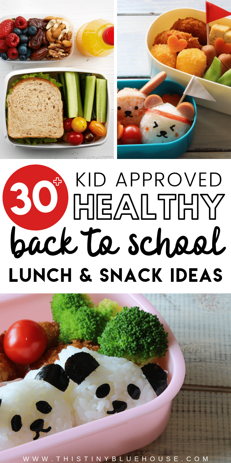 here are over 30 delicious and easy back to school lunch ideas that provide balanced meals that wont get boring and repetitive. #backtoschool #packedlunchideasforkids #lunchideasforkids #packedlunchideasforschool #schoollunchideas