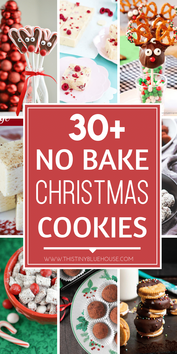 30+ Delicious No Bake Christmas Cookies and Desserts - This Tiny ...