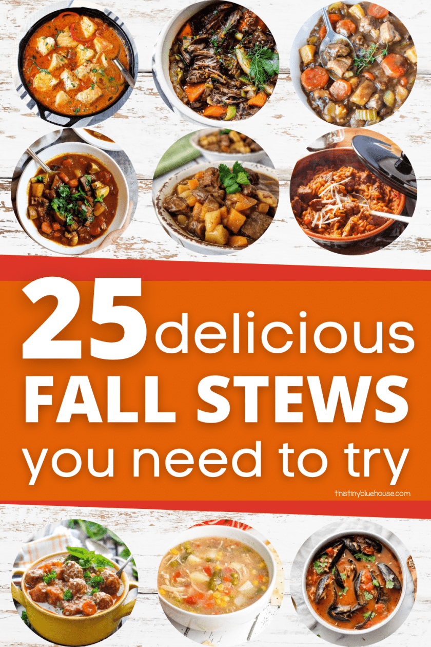 20+ Mouthwatering Delicious Hearty Stews You Need Try This Fall