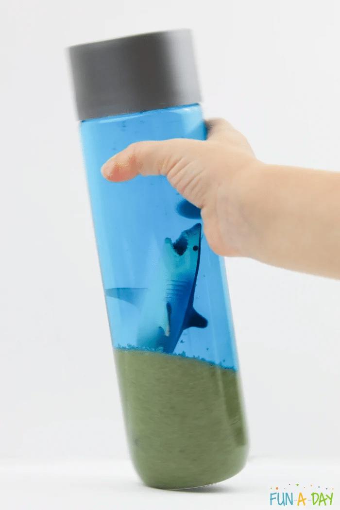 shark sensory bottle craft
