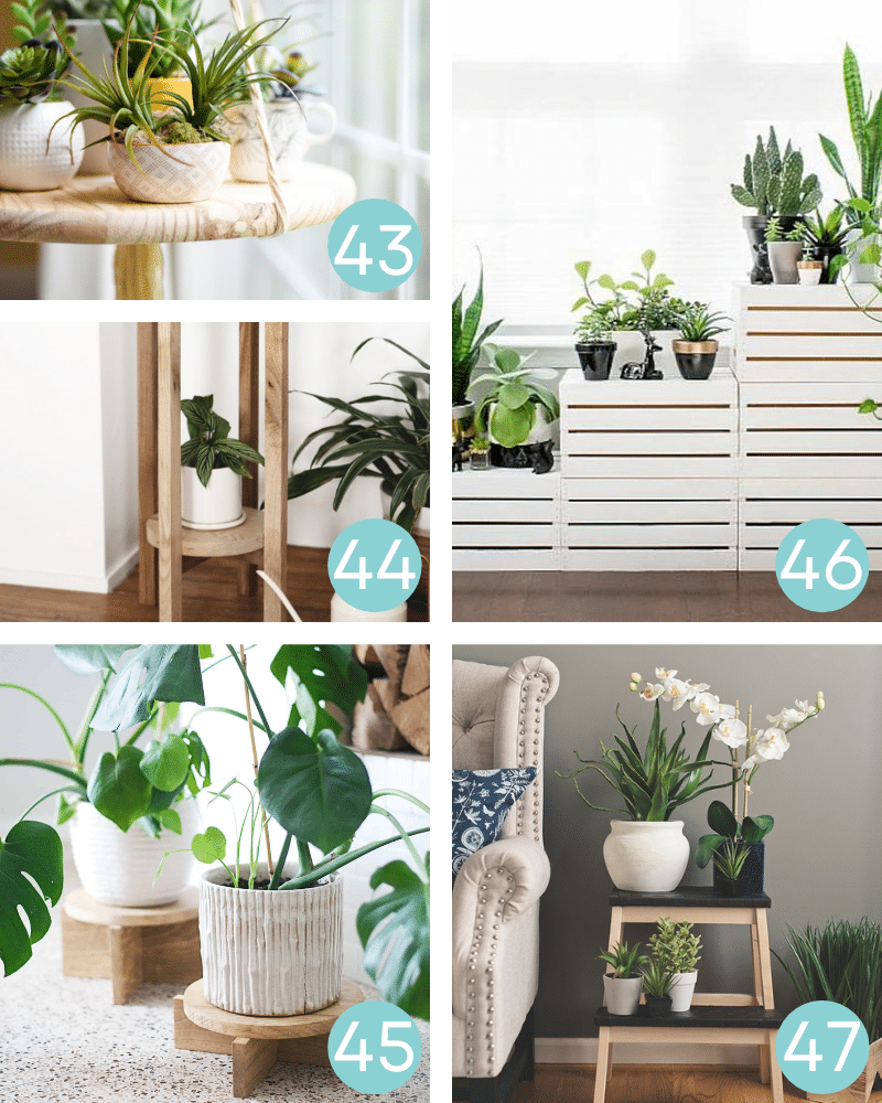 diy plant stand projects