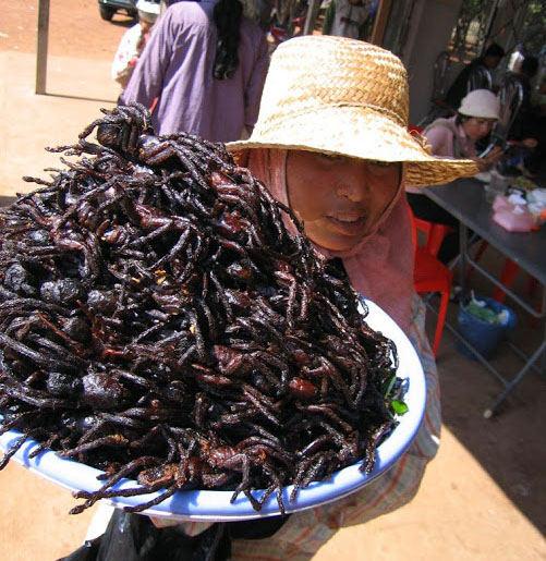 A spider seller in Cambodia