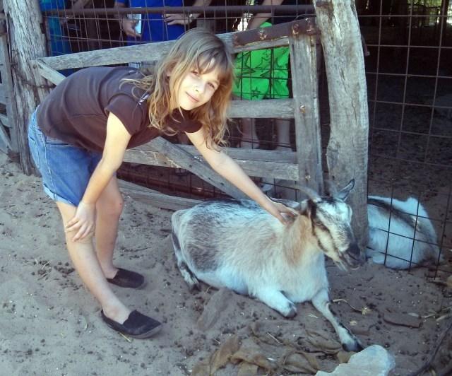 petting a goat at Murchison House Station, Kalbarri, Western Australia