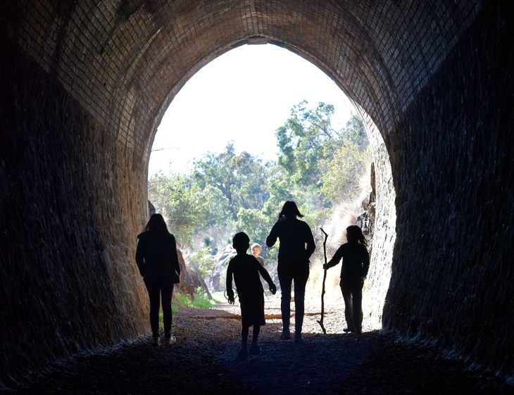 Swan View Railway tunnel at John Forest National Park