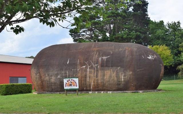 Australia's Big Potato