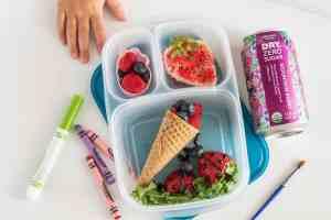 Bento Box Ideas for Kids