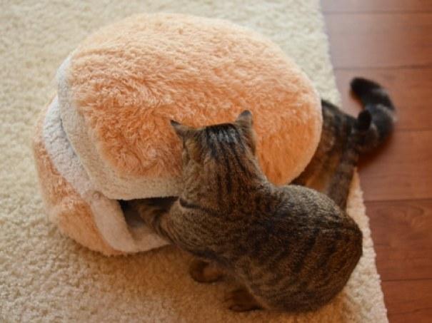 cat-burger-bed-maru-3
