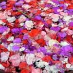 Flower petals in Ubud, Bali