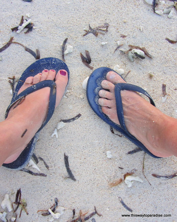 Flip Flops in Paradise