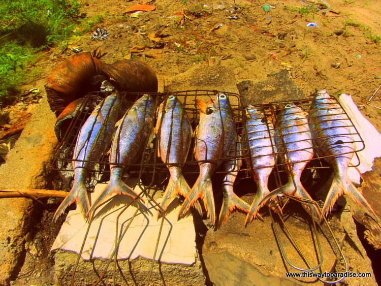 Grilled Fish on Gili Air, Gili Islands