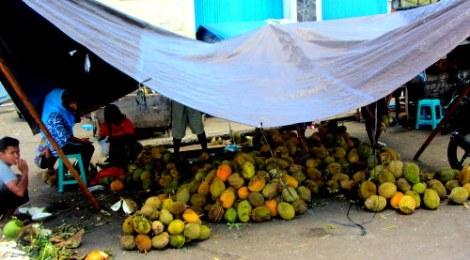 Durian in Maluku