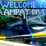Raja Ampat Dive Resort-Where To Stay In Raja Ampat