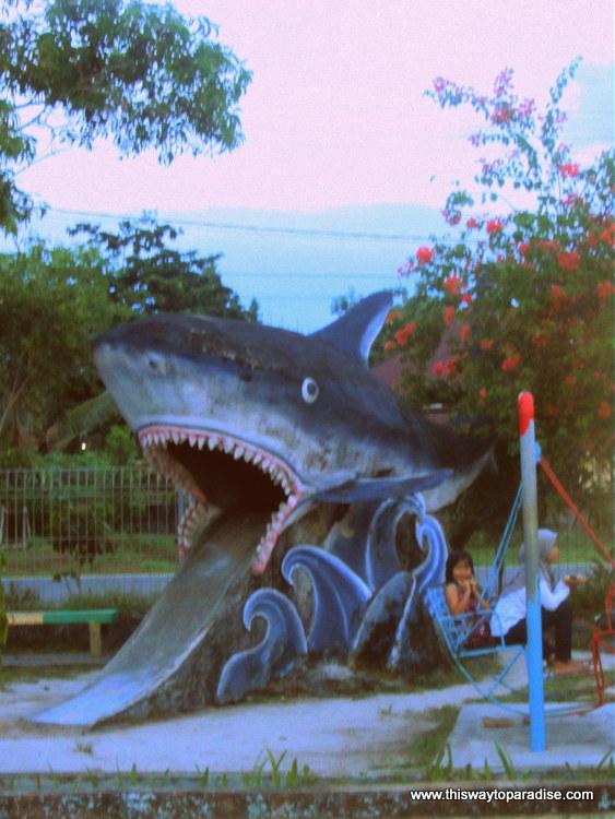 Shark slide on Belitung Island, Sumatra