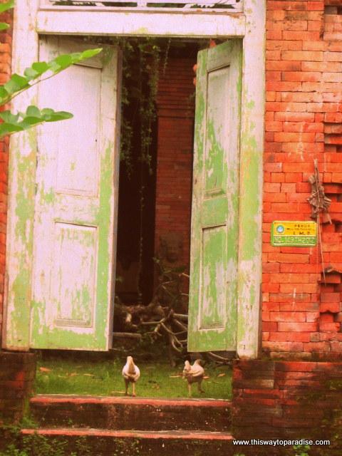 Old doors in Bali