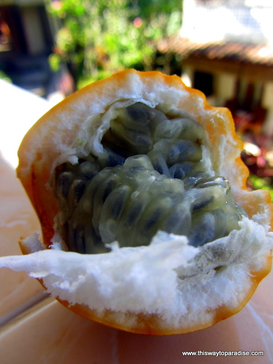 Bali passion fruit