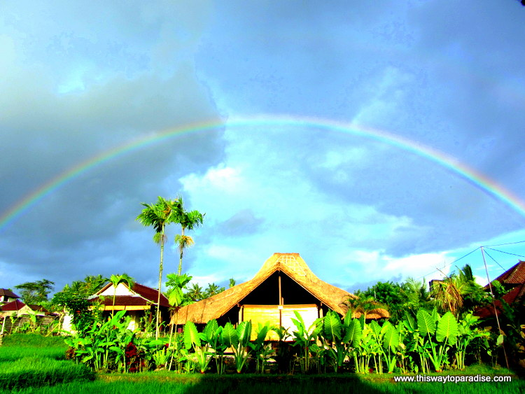Rainbow over the rice field in Bali www.thiswaytoparadise.com