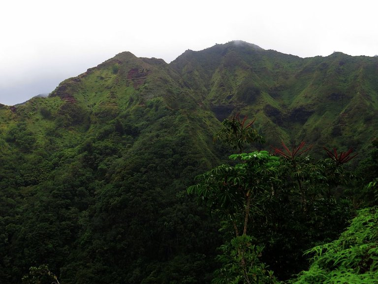 Hawaii Hikes: The Most Magical Hike Of My Life At Kuliouou Ridge