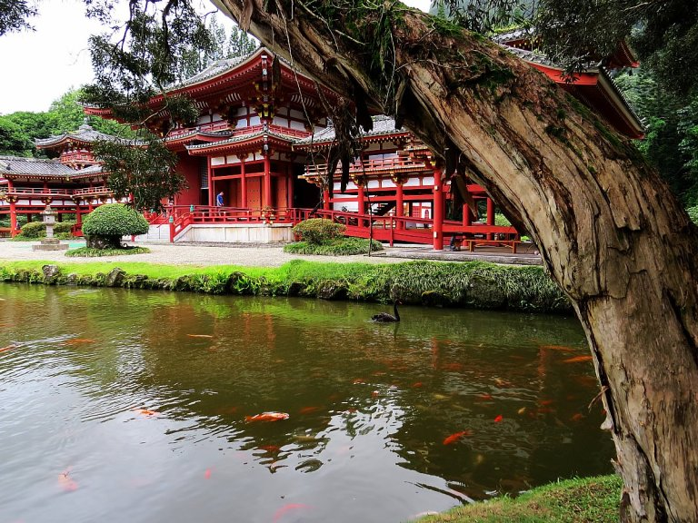 odo-In Temple: The Place For Meditation In Honolulu