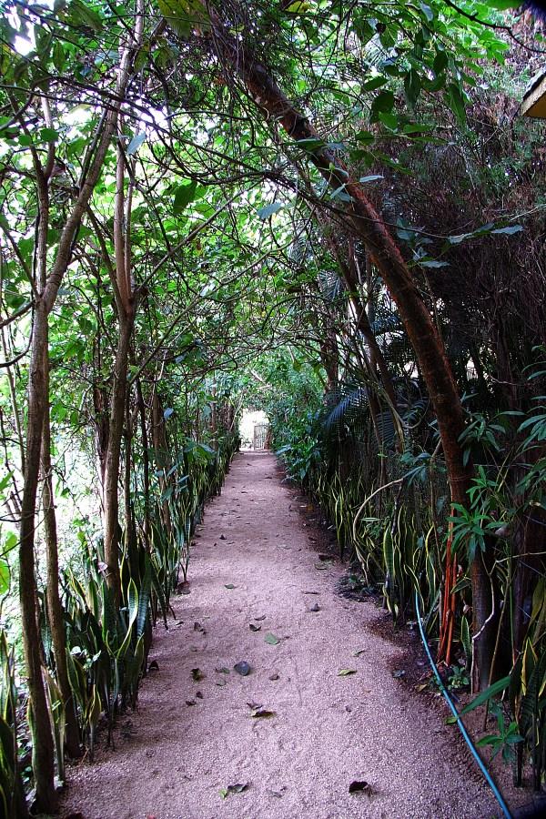 Vereda: A Jungle Oasis In Yelapa, Mexico