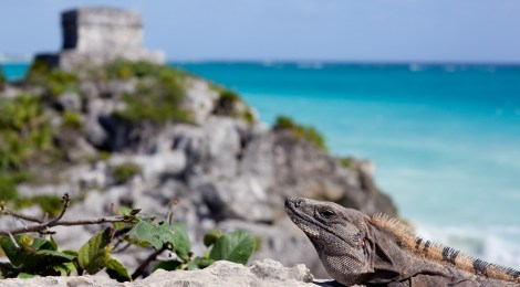 The Top 7 Reasons You Should Visit Tulum