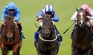 horse racing x