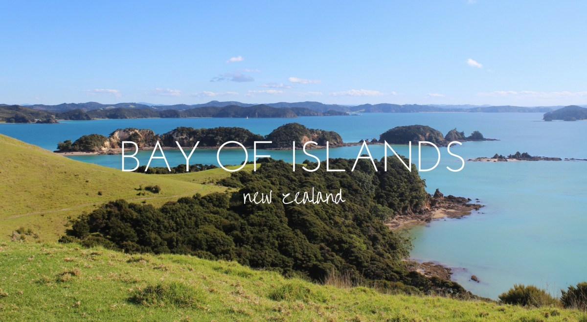 The Beautiful Bay of Islands