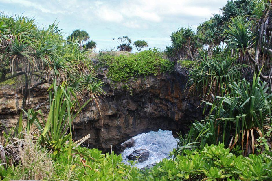 A sea arch in Tonga