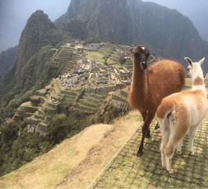 Machu Picchu und seine heutigen Bewohner