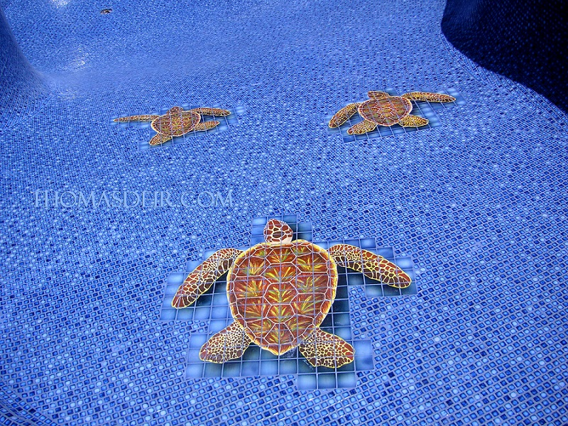 Pool Tile Murals Thomas Deir Honolulu Hi Artist