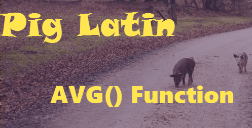 Pig Latin Average Function