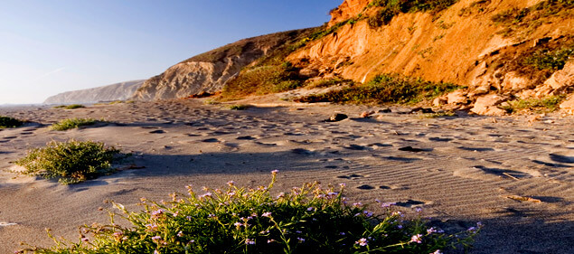 Stinson Beach Homes for Sale from Thomas Henthorne Top Agent Marin