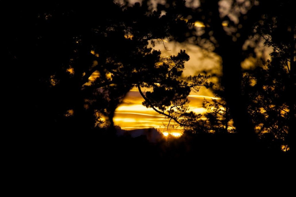 Sunset in Marin County, California