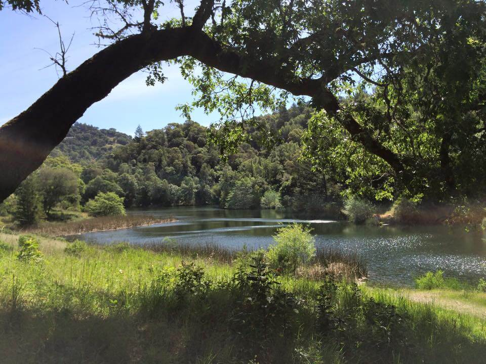 Phoenix Lake photo hike in marin