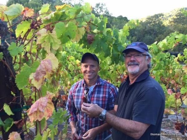 photo of Marin Vineyards Paul Edwards and Thomas Henthorne