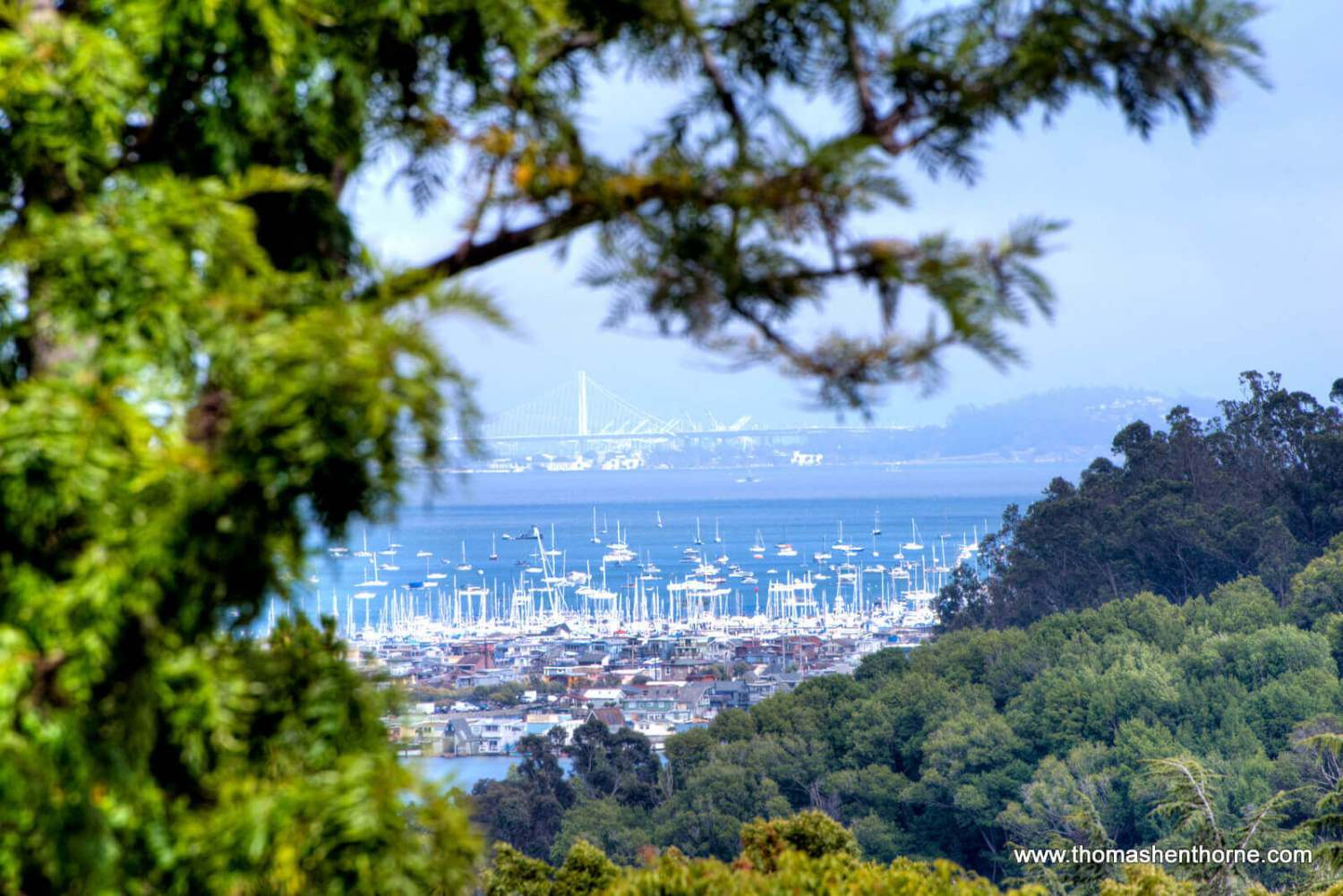 Telephoto view of bay bridge and bay in distance