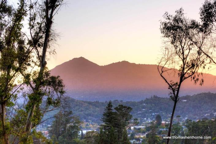 View of Mt. Tam from 215 Locust
