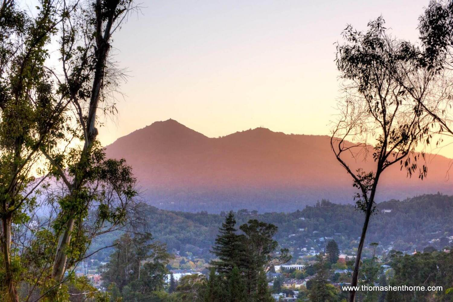 View of Mt. Tam from 215 Locust