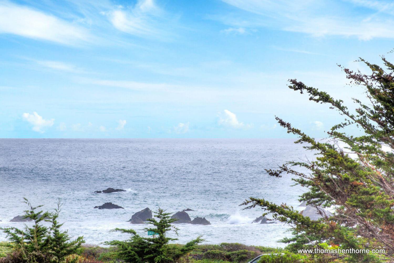 View near Calle del Sol Bodega Bay