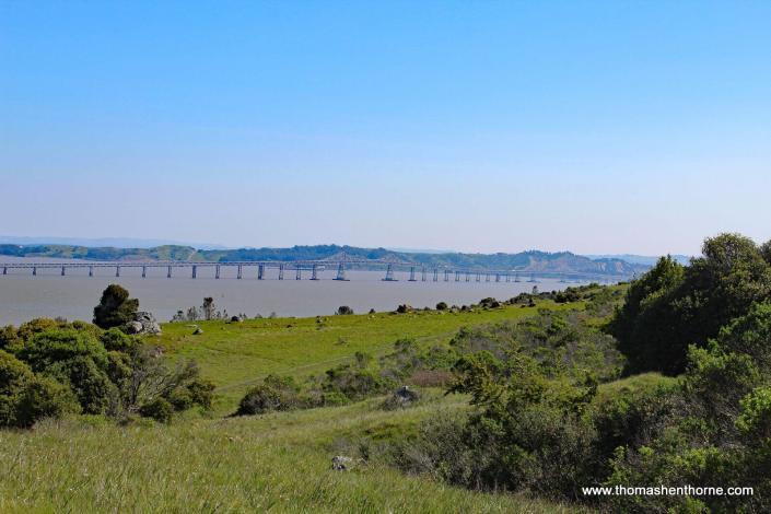 Richmond San Rafael Bridge view from Ring Mountain