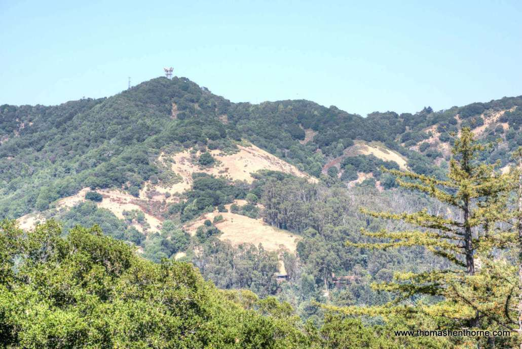 View of San Rafael hills from home