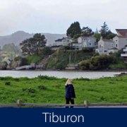 Tiburon Homes for Sale