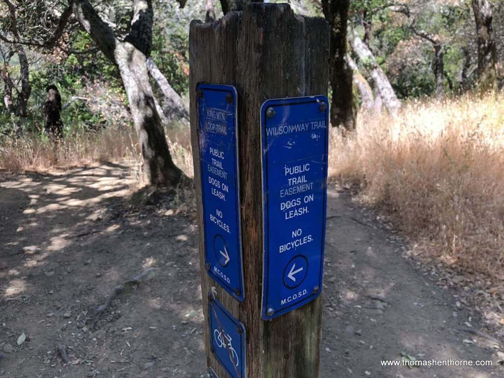 Intersection of Wilson Way Trail and King Mountain Loop Trail Sign